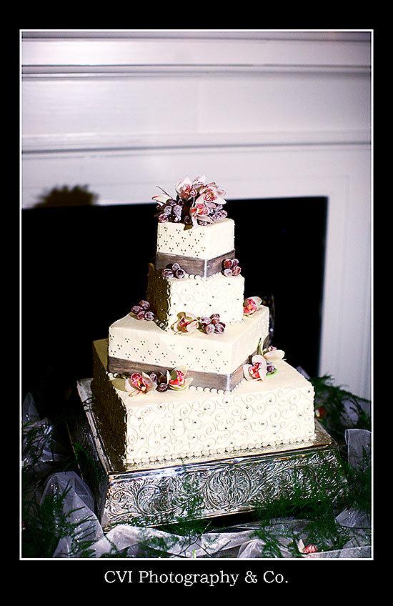 Charleston Wedding Photographers Virgil Bunao Katelyn + Matt  |  married